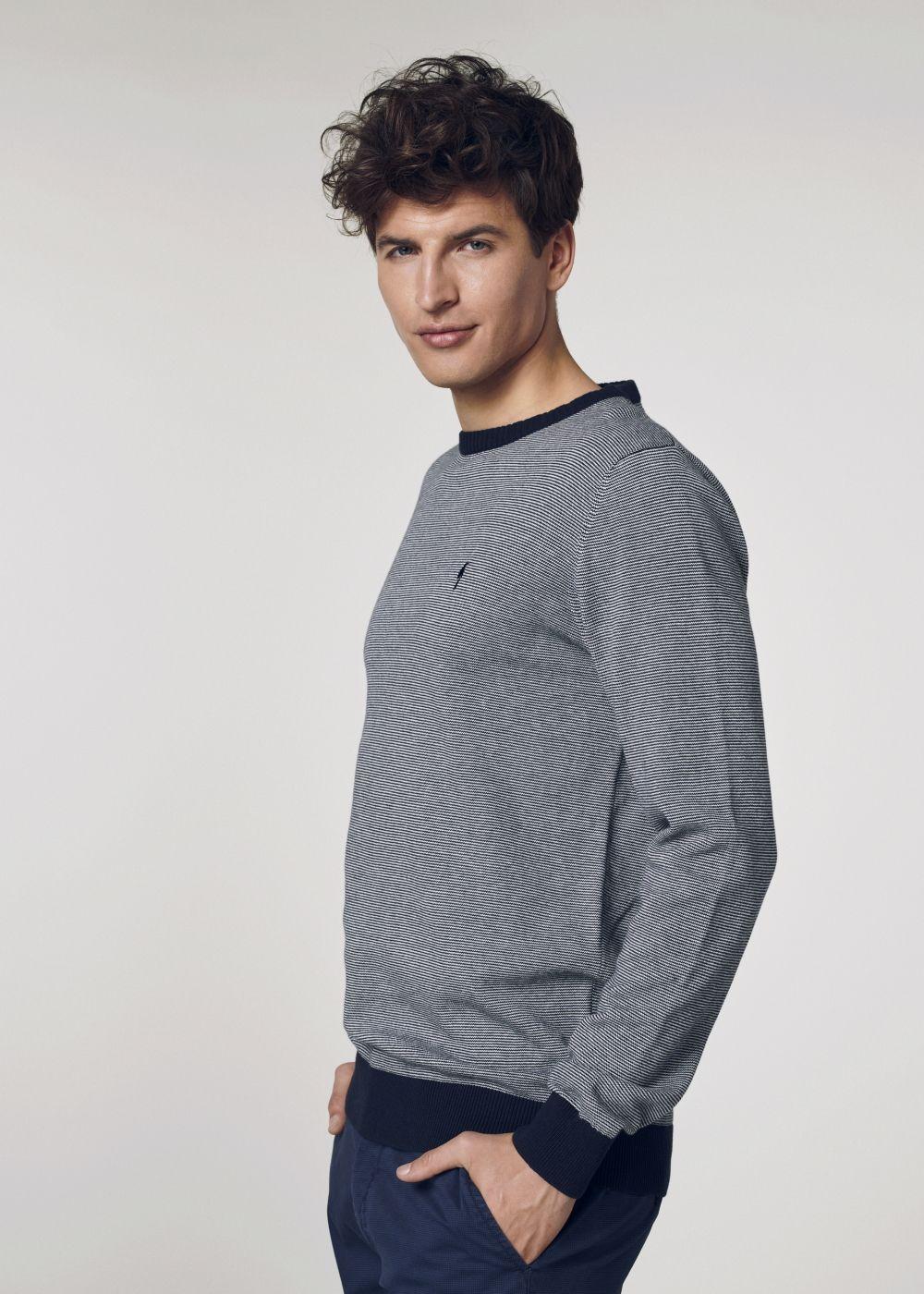 Sweter męski SWEMT-0094-69(W21)