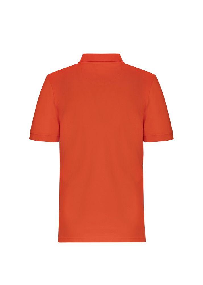 Koszula polo POLMT-0032-42(W20)
